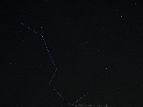 流れ星が撮れました!